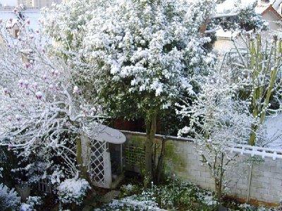 La neige arrive!