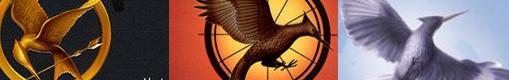 Hunger Games ; Vous ne saurez plus le lâcher ♥