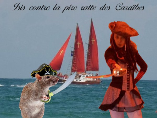 Les pirates.