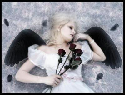 Ange noir ou Ange blanc