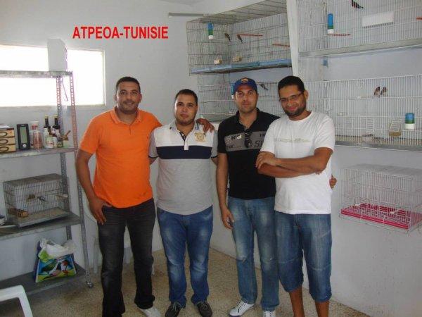 ATPEOA-TUNISIE