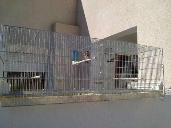 Un autre couple prend son bain de soleil