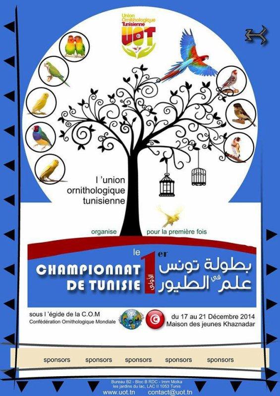 championnat de tunisie