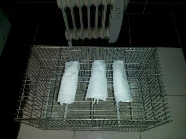 Mon premier lavage pour concour c mal passé je ne sai pas pourquoi?