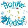 BONNE ANNEE !!!!!!!!!