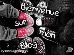 bienvenue sur mon blog ^^