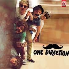 Moustache One Direction