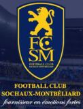 Photo de 2008-FC-SOCHAUX-2009