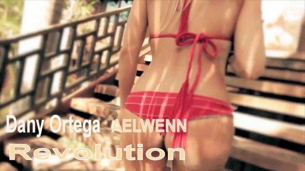 Dany Ortega - Revolution (AELWENN Version) (2013)