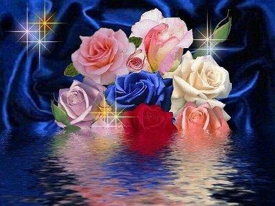 La signification des couleurs l 39 amitie la vrais si non rien le reste n 39 est - Signification des roses rouges ...
