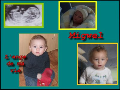 Migwel