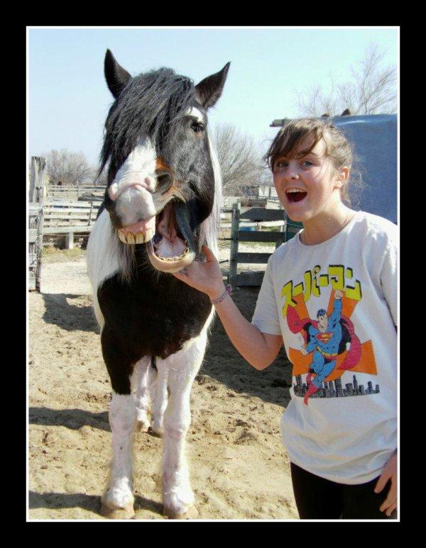 """"""" J'aime mon cheval, à la folie et plus encore ♥ """""""