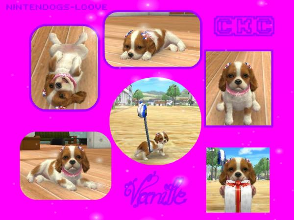 Vanille !