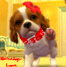 Photo de Nintendogs-loove
