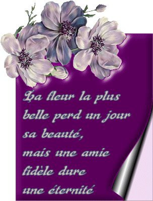 Poeme D Amitie Carole Wauters