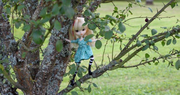 Promenons nous dans les bois pendant que le loup y est pas