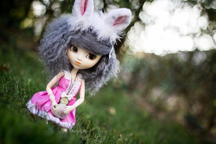 Little bunny in the garden