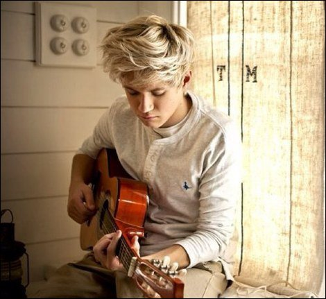 •Prologue avec Niall Horan•