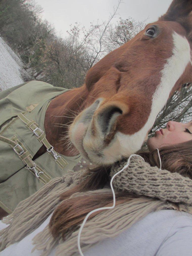 Mon poney, je crois que si il pouvait parler il serait capable de te réciter ma vie de A à Z.
