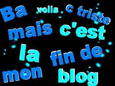 je met fin à mon blog!!!!!