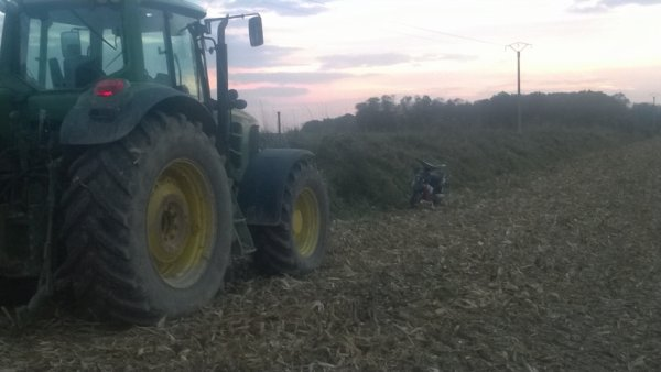 moisson de maïs 2014