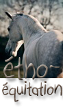Photo de Etho-Equitation