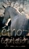 Etho-Equitation