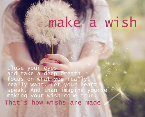 Take time to make a wish !