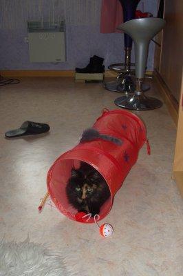 Princesse et son nouveau tunel