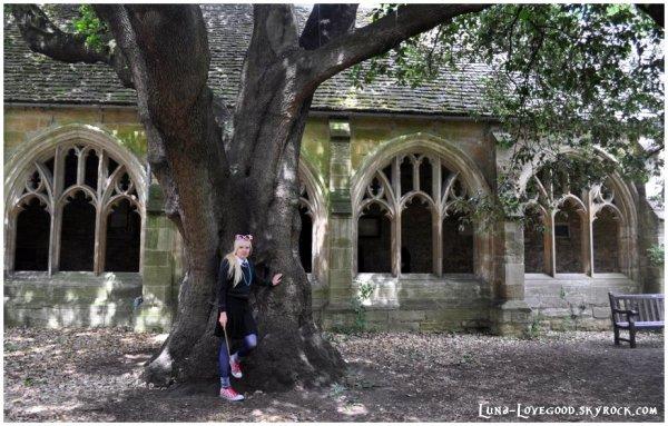 ϟ L'université d'OXFORD (Angleterre) ϟ