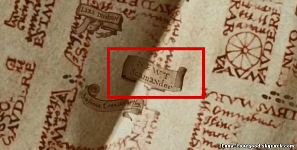 Plus de 20 ans que la saga Harry Potter existe ...