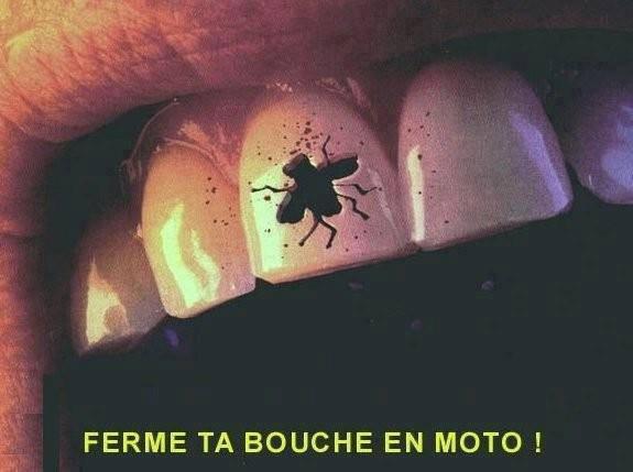 FERMER LA BOUCHE..A moto !!!!!!