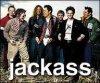 The-Jackass-fan