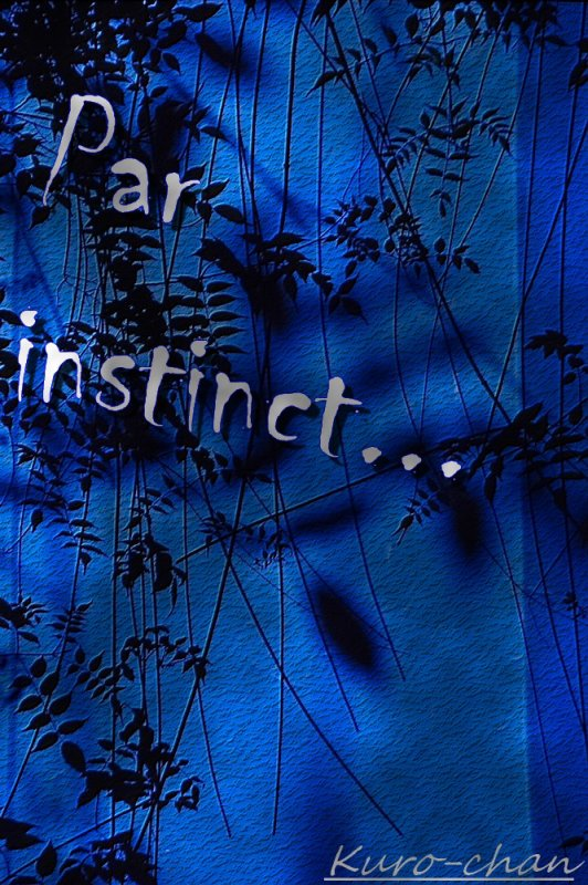 Chapitre 5: Par instinct...