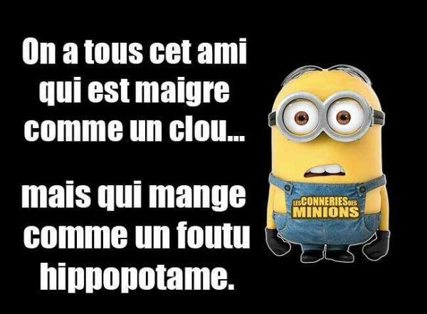 Citation 4 Citations Des Minions