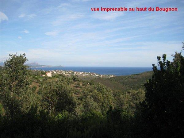 Le Roc d'Azur 2012 ...du point de vue de RV(tt)