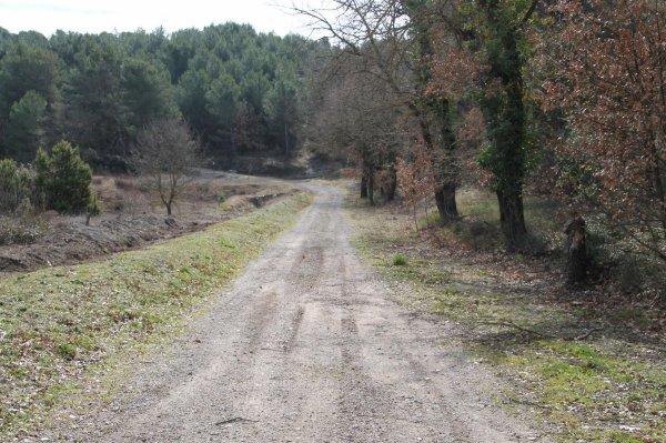 Au 3e km on est en pleine nature