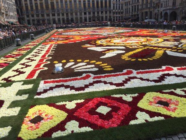 Tapis de fleurs Bruxelles Grand-Place 2018
