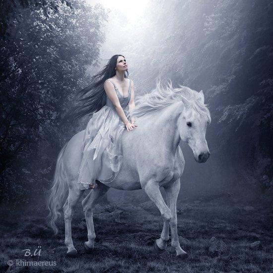 mon cheval blanc