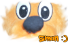 Simon-Le-kangourou