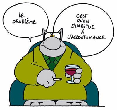 Le chat 1448517525