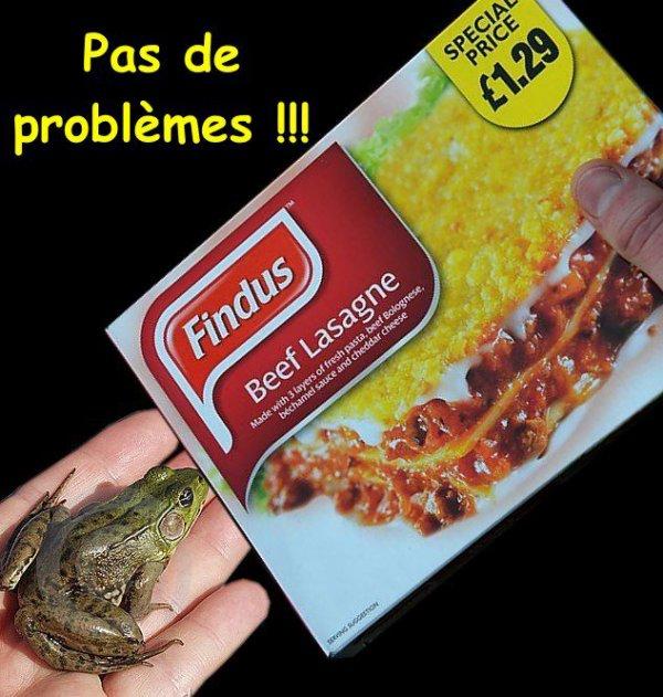La grenouille qui voulait se faire aussi grosse que le b½uf !...