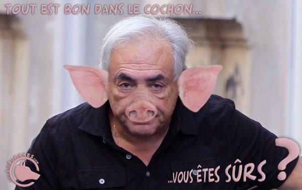 """Spécial """"Marcela Iacub relate sa liaison avec DSK, une """"abomination"""" selon l'ex-patron du FMI"""" - Image n° 3/3 !..."""