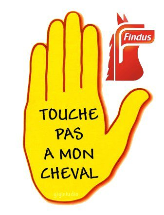"""Spécial """"FINDUS & LA VIANDE DE CHEVAL - Photo n° 10/12 """" !..."""