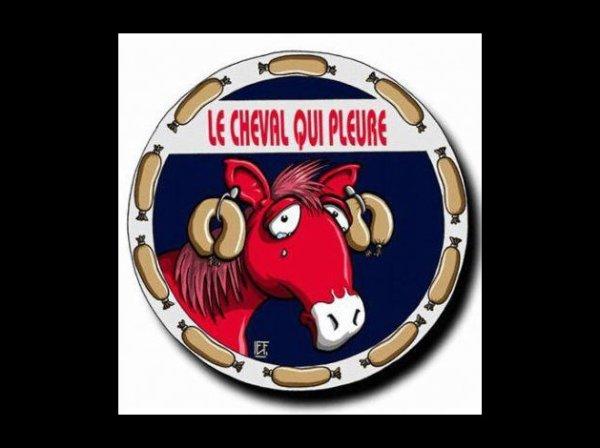 """Spécial """"FINDUS & LA VIANDE DE CHEVAL - Photo n° 05/12 """" !..."""