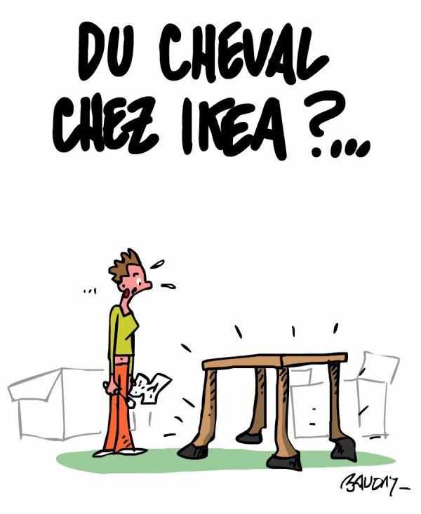 """Spécial """"Les dessins d'actualité de l'illustrateur Hervé Baudry"""" - Dessin n° 1/5  !..."""