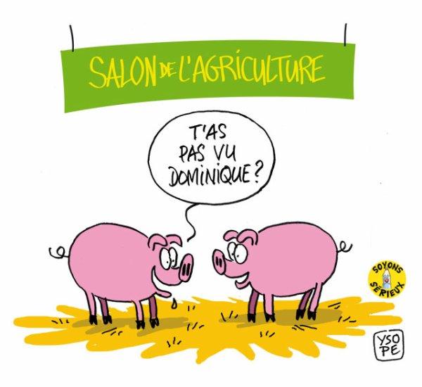 En direct du stand porcin au Salon de l'agriculture !...