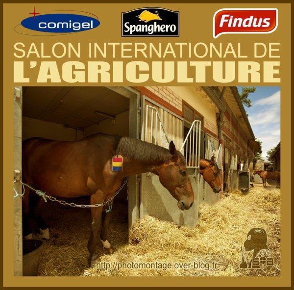 """Spécial """"SALON DE L'AGRICULTURE"""" !..."""