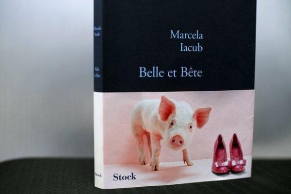 """Spécial """"BELLE ET BÊTE, LE LIVRE DE MARCELA IACUB SUR DSK"""" - Image n° 1/2  !..."""