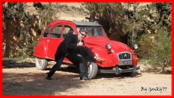 De retours de vacances en Tunisie ...